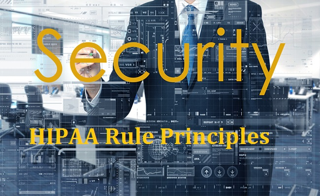 HIPAA Security Rule Principles
