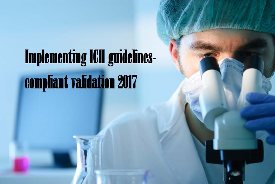 Implementing ICH guidelines-compliant validation
