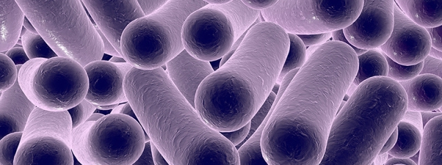 Microbiome, Diet, Health, and Disease.jpg