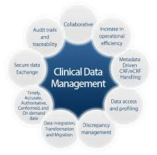Clinical Data Management4